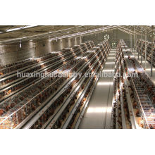 china new design galvanizing best quality types of layer chicken cages for zimbabwe poultry