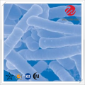 Lactobacillus Acidophilus Freeze-Drying Powder