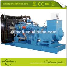Generador silencioso en contenedor 16V2000G65 1000KVA MTU con buen precio