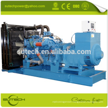 Silent containerized 16V2000G65 1000KVA MTU generator with good price