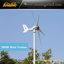 Generador de Electricidad de Potencia Eólica de Potencia Mini Tamaño Máx. 300 W