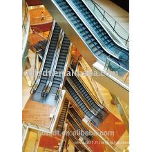(EN115) Produit d'escalier professionnel FJZY élégant / prix d'escalier de la technologie japonaise