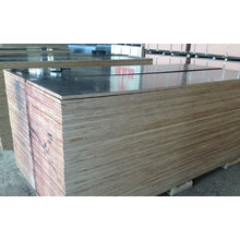 Film Faced Plywood Poplar Core WBP Glue for Construction Usages