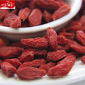 New red distributor conventional goji berry