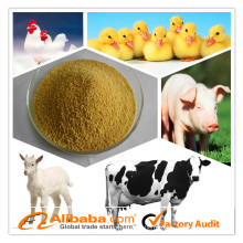Wholesale Animal Feed Additive Enzyme for poultry/pig/fish/cattle
