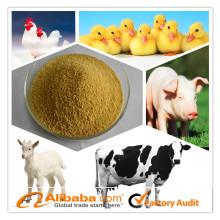 Enzyme aditivo por atacado da alimentação animal para aves domésticas / porco / peixe / gado