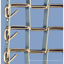 Flat Wire Mesh Belt (stainless steel 304L)