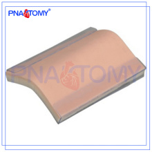 Modelo de piel de silicona PNT-TM001 Modelo de almohadilla de entrenamiento de sutura (con base)