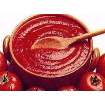 2200g Chinesischer Preis Bio Tomatenkonservenpaste