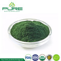 Natural Spirulina Powder Organic