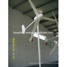 Horizontal à un aimant permanent éolienne 300W pour un usage domestique