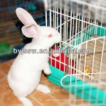 Trade Assurance China Factory fornece material de aço inoxidável gaiolas de coelho para vendas