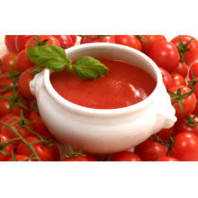 Canned Tomato Paste 22-24%/28-30% High Quality