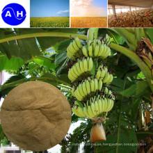 Trigo Abono orgánico Aminoácido 65%