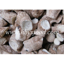 Healthy Food Low Price Shiitake Mushroom Leg