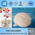 Pharmazeutische Klasse Fisch Kollagen