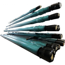Oil Base Mud Resistant Downhole Motors