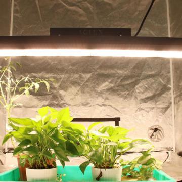 Линейные светодиодные лампы для выращивания растений с высоким PPFD par