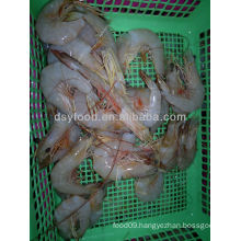 Frozen King Banana Prawn Price