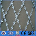 High quality Galvanized razor barbed wire fence