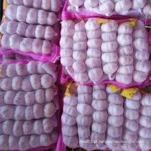 Pequeno saco embalado fresco alho branco normal (5cm)