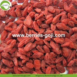 Supply Nutrition Super Food Rode Wolfberries