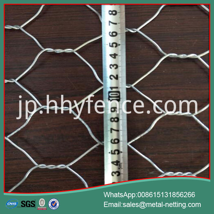 Hexagonal Wire Mesh Net