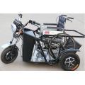triciclo reverso elétrico para deficientes físicos