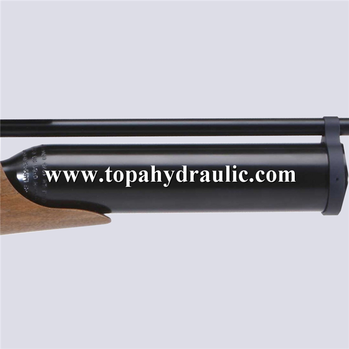 High quality Sales Champion air gun cylinder