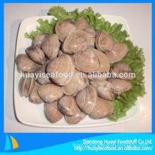 fresh frozen best quality enough surf clam