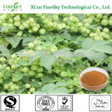 Dried hops flower extract powder for beverage