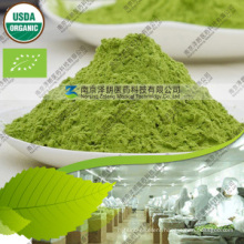 Best Selling 80 to 200 Mesh Barley Grass Powder Organic