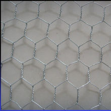 Hexagonal Hole Galvanized Wire Material Wire Mesh