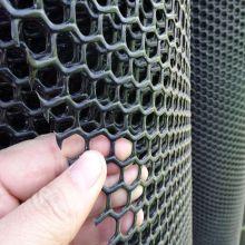 Шестигранная форма отверстия пластичная плоская сетка для продажи