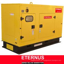Generador multiuso Diesel ISO9001 Ce (BU30KS)