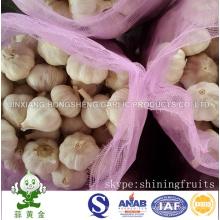 Normal White Garlic Fresh New Crop 10kgs Mesh Bag Packing