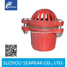 Válvula de pie rojo de hierro fundido