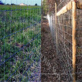 Hot sale! Deer fence/Galvanized Wire Mesh Deer Fence supplier