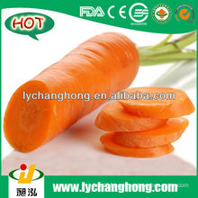 Carrot Price
