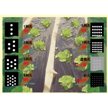 Plastic Agricultural Mulch Film With Holes