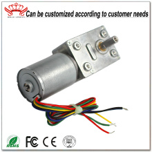 Bldc+Motor+With+Worm+Gearbox