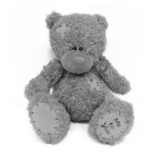Urso de assento longo-haired Grey amor