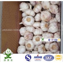 Normal White Garlic New Crop 6.0cm 10kgs Carton