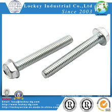Stainless Steel 304 Flange Screw Flange Bolt