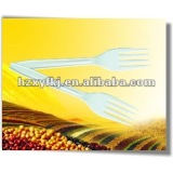Biodegradable disposable corn starch fork