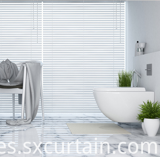 Shade Blind Curtain Aluminum