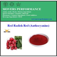 Alimentos e Bebidas Pigmento Natural Red Radish Vermelho