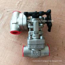 API6d 800lb a forgé la valve de porte d'extrémité de soudure bout à bout d'acier inoxydable