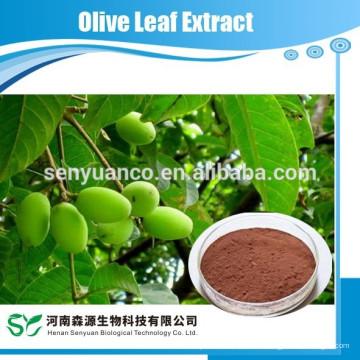 Экстракт оливковых листьев