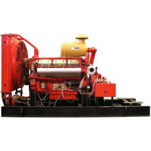 Wandi Diesel Engine for Pump (191kw/260HP) (WD135TB19)